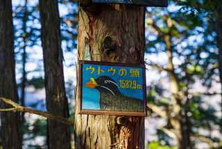 手製の山頂標示