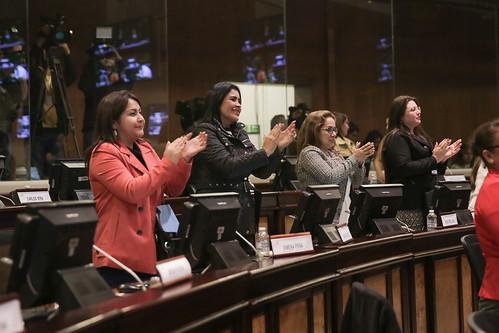 Sesión No. 487 del Pleno de la Asamblea Nacional - 25 de noviembre de 2017
