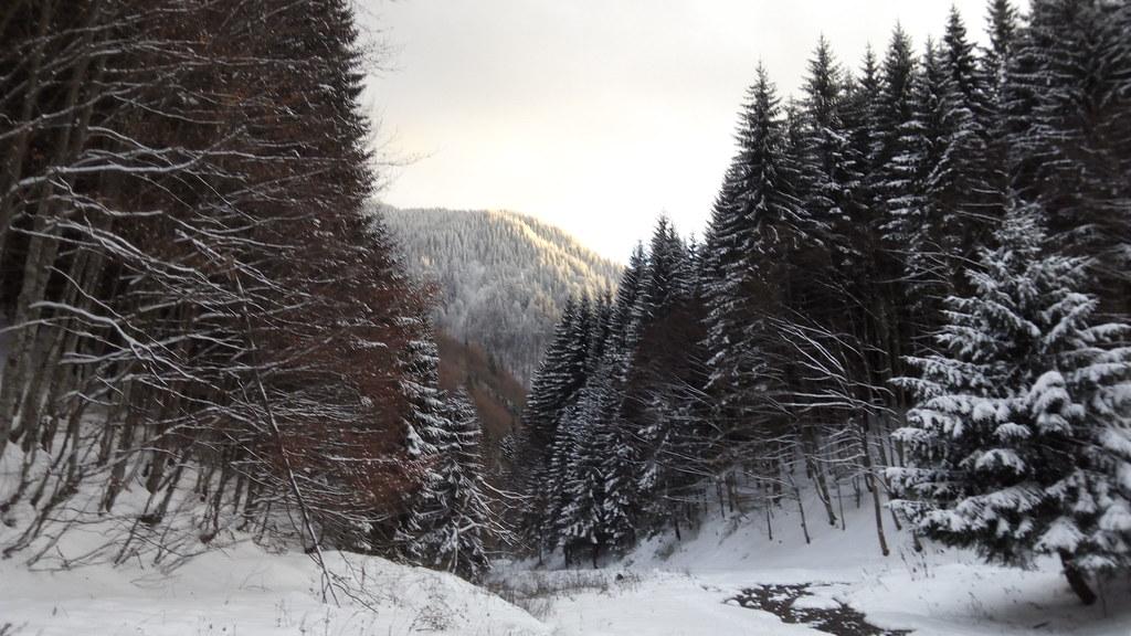 Ciucas Peak on winter