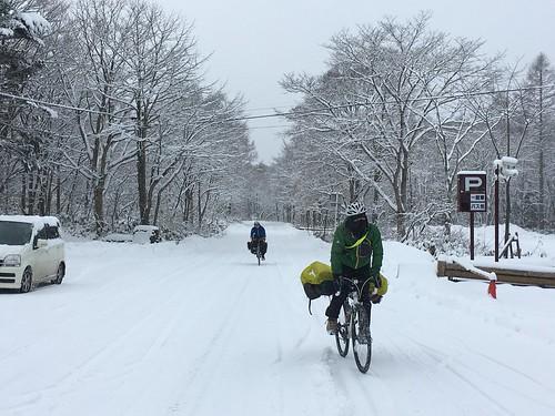 乳頭温泉郷までの道を思い出す雪の並木道