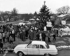 1966 Verplanck Christmas Tree