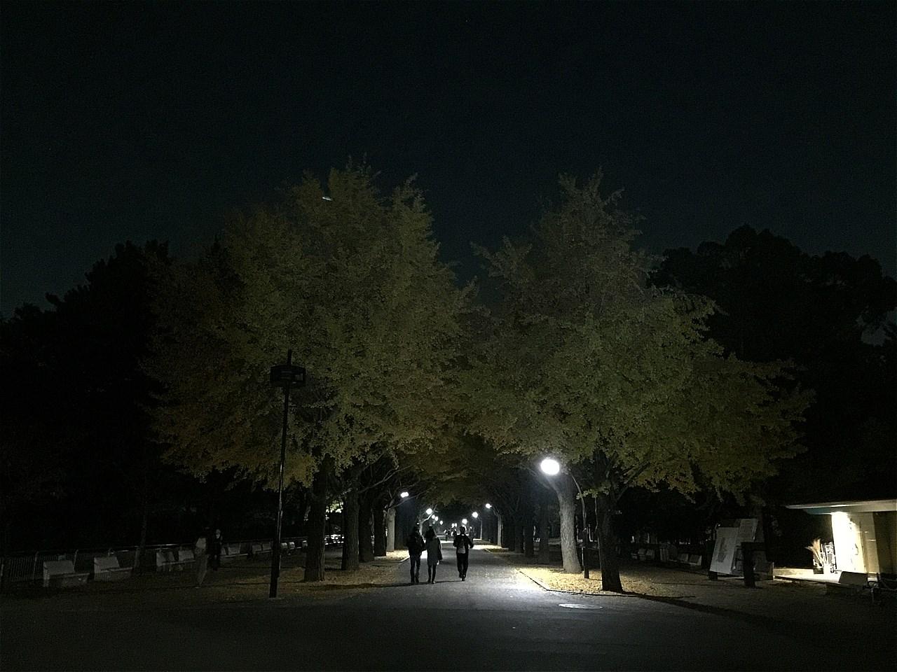 20171101_光が丘 (9)