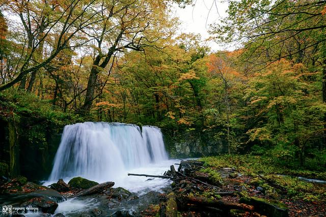 秋色是山巒中的一抹紅 | 16