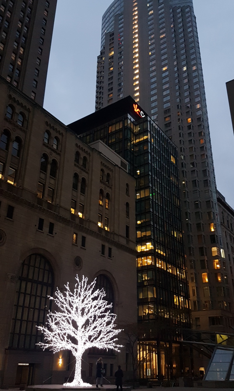 Commerce Court Christmas tree