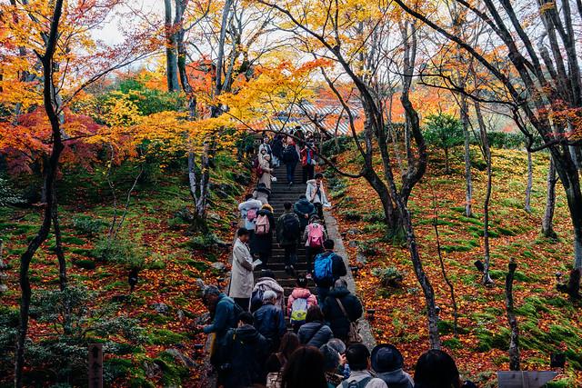 Kyoto_Jyojyakko-ji_04