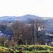 A Bollington panorama