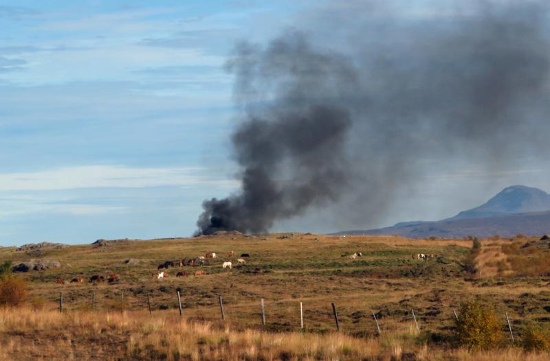 horses-smoke-hill