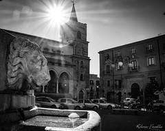 il leone e la torre
