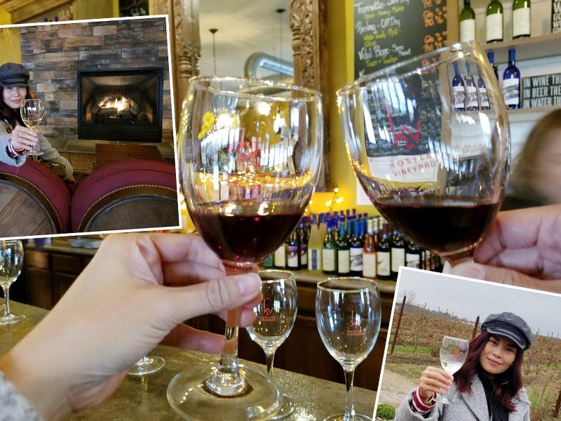 cheers-wine-kosicek-winery