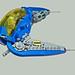 Blue Auk by Rogue Bantha