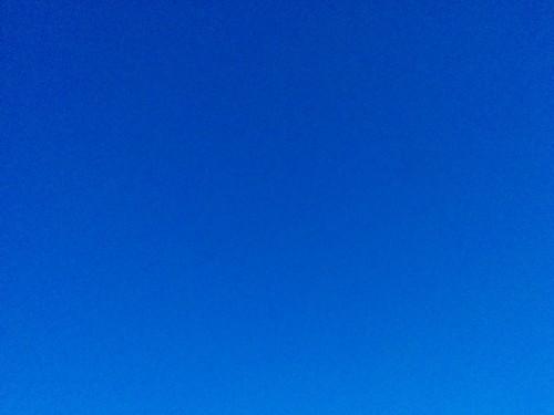 Another Derek Jarman blue #pei #princeedwardisland #charlottetown #charlottetownairport #dawn #blue #derekjarman #latergram