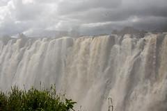 3-Zambia-Vic Falls -2