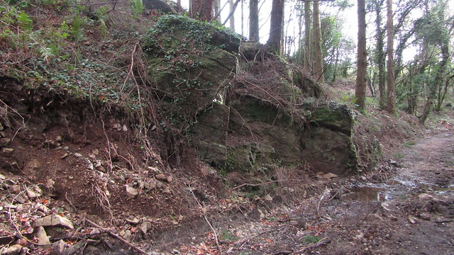 North Wood Tor upper outcrop