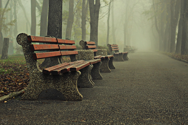Cold, foggy and lonely...