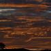 Sunset 11 13 17 #05 por Az Skies Photography