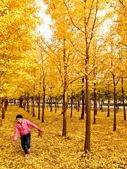Dance of the Autumn Child