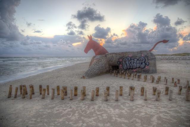 Mules on sand