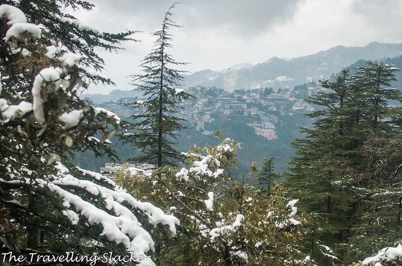 Mussoorie Winter (21)