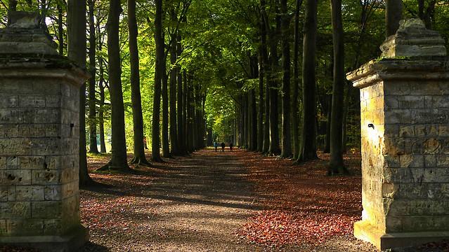 De Laan naar Pietersheim /The lane to Pietersheim