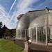 Bicton Botanical Gardens Palm House