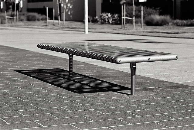 shadows and bench