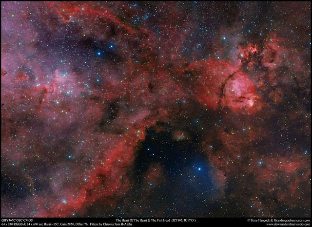 The Heart Of The Heart and Fish Head Nebulae
