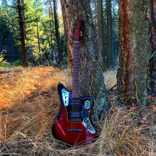 guitarphotography musicphotography fenderguitar fenderguitars guitars electricguitars offsetguitar shortscale fender guitar electricguitar fenderjaguar