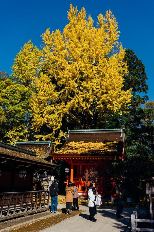 Kyoto_Kitano_09