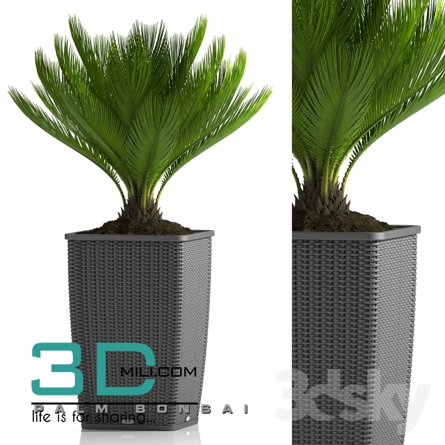 105  Plant 105 3dsmax Model free Download - 3D Mili - Download 3D