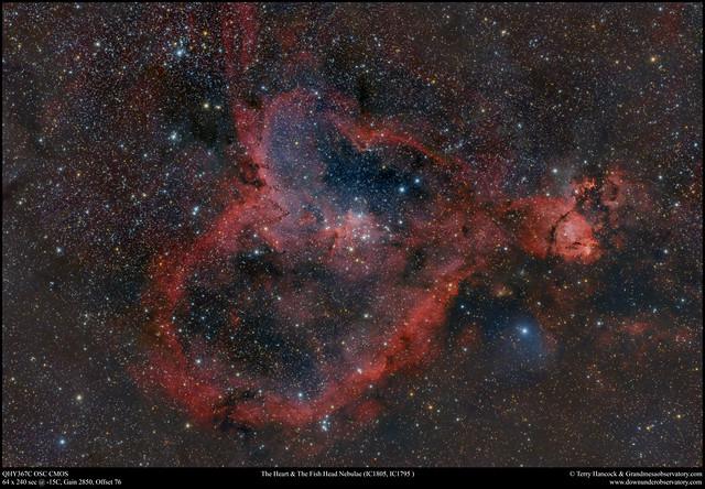 The Heart & Fish Head Nebulae