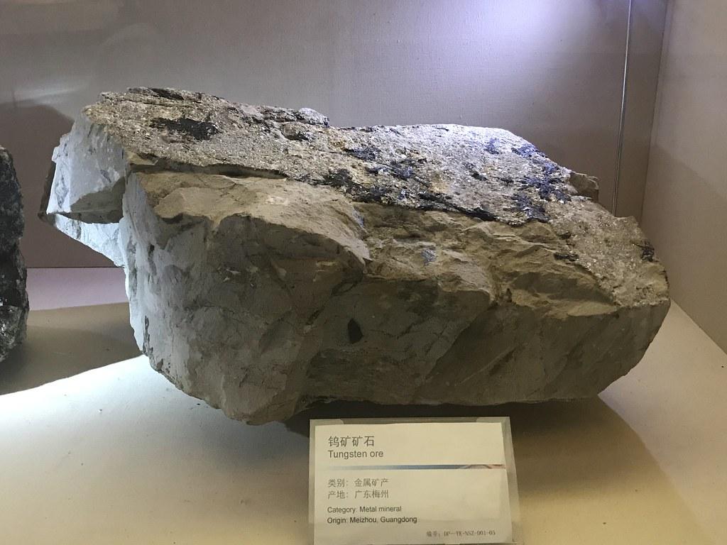Dapeng Geology Museum & Research Center