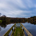 Osborne's Pond   Shipley