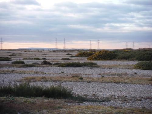 The UK's Only Desert: Dungeness NNR