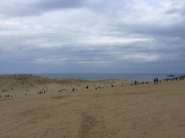 鳥取砂丘でポケモンGOする人たち1