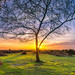 Vereley Sunset