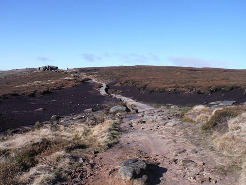 Paved Path through Boggy Ground