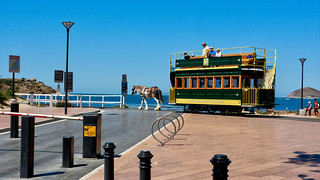 Horse Drawn Tram - Victor Harbor