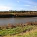 The River Arun near Arundel