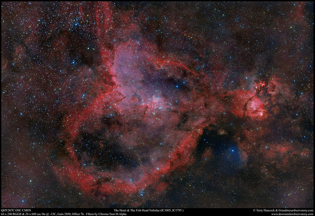The Heart & Fish Head Nebulae with H-Alpha