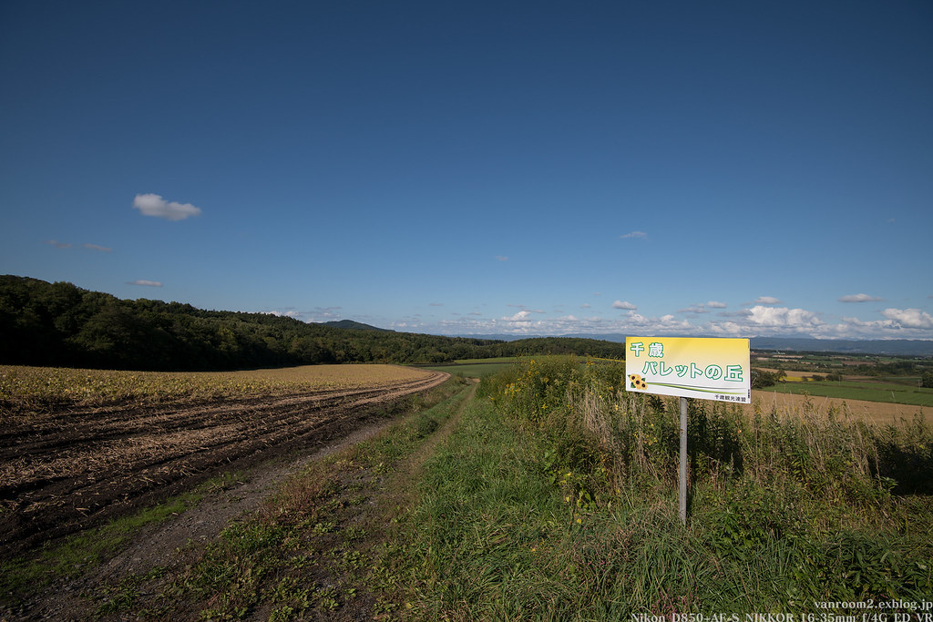 東千歳パレットの丘