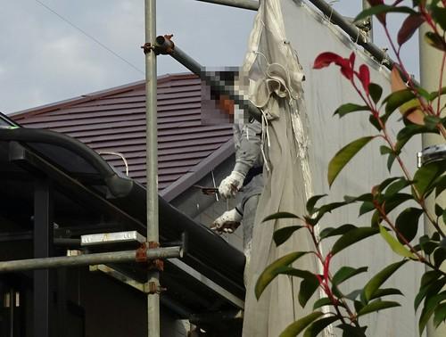 外壁と屋根を塗る