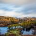Tarn Hows - Lake District - Cumbria
