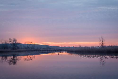 sunrise crosswinds marsh michigan morning nikon d7100 nikkor 1755 28