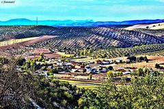 Piñar (Granada)