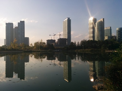 Towers of Mimico #toronto #humberbaypark #skyline #mimico #lakeshoreblvd #condos #towers #latergram