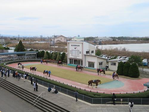 金沢競馬場の指定席バルコニーから見下ろしたパドック