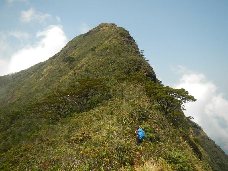 Ascending Mayo's Peak