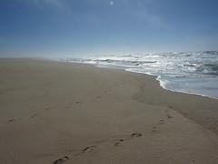Divoká Praia São Jacinto: Tady se posaď a vydechni, člověče
