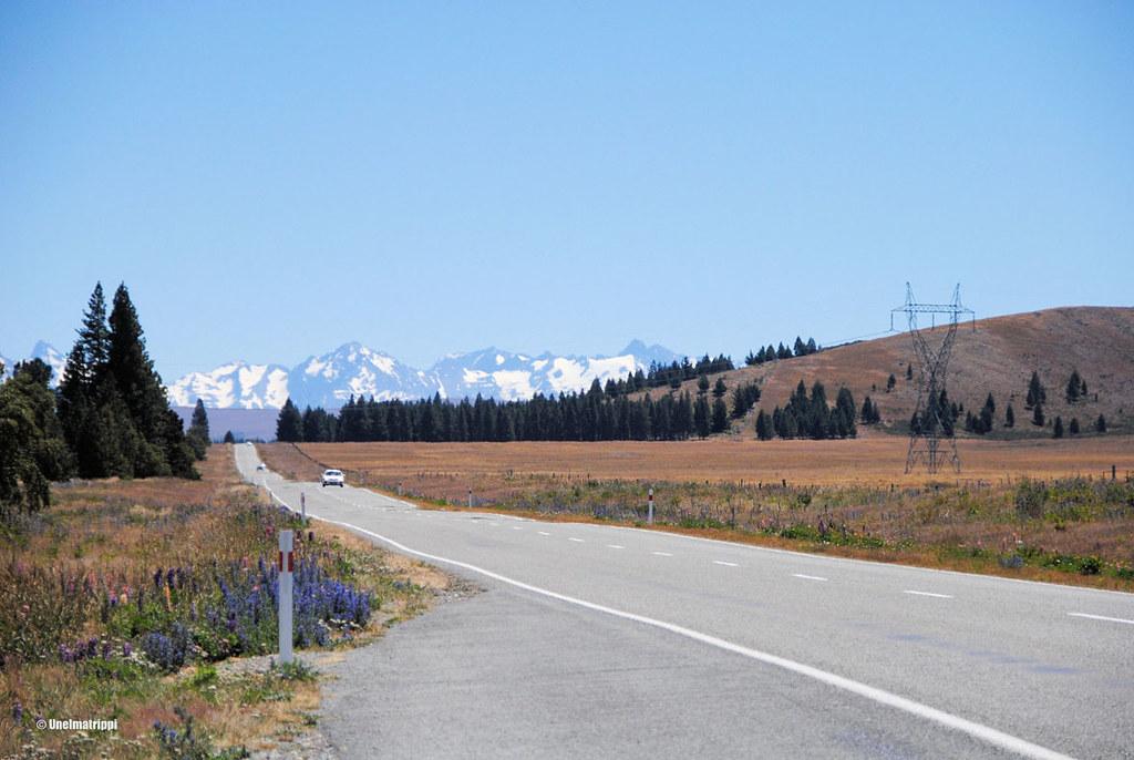 Matkalla Christchurchista Lake Tekapolle