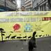 Día Internacional de los Derechos Animales en Valparaíso (10-12-2017)